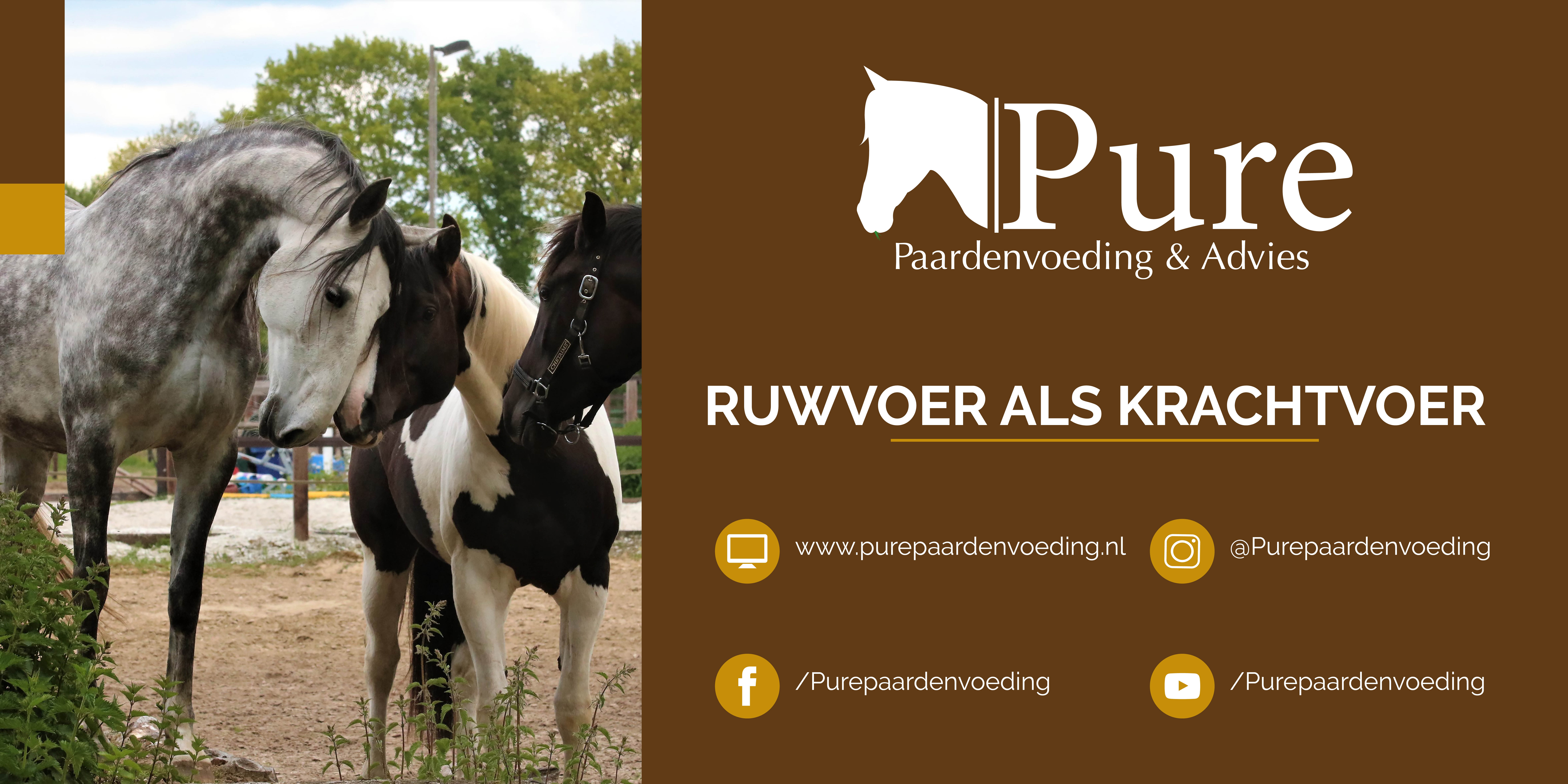 Pure Paardenvoeding