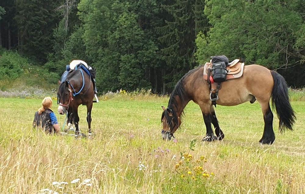 Carolien Staal trektocht te paard