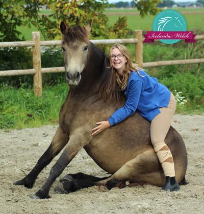 Iris icelandic welsh neckrope vrijheidsdressuur zitten paard